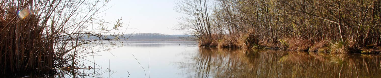 Naturerleben Wasser
